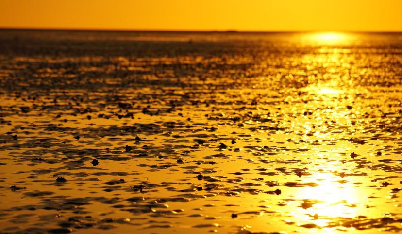 Watt Sonnenuntergang, © Die Nordsee GmbH, Robin Schneider