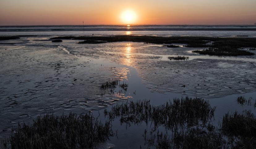 Sonnenaufgang über dem Watt, © Florian Trykowski