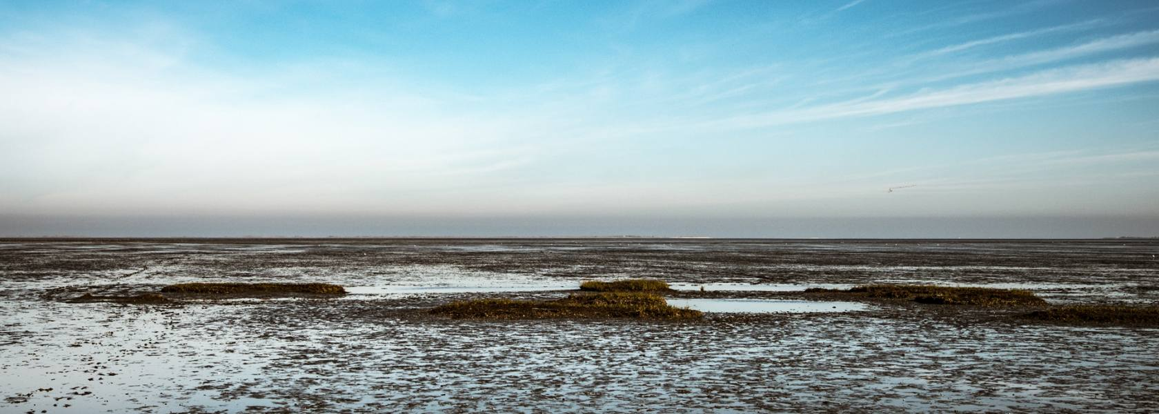 Wattenmeer, © Andrea Ullius, ullala.ch