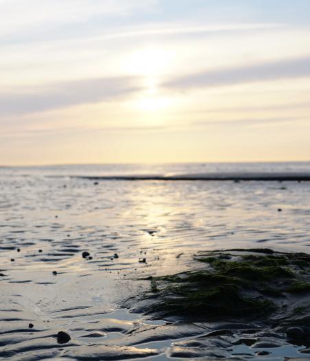 Watt Sonne, © Die Nordsee GmbH, Robin Schneider